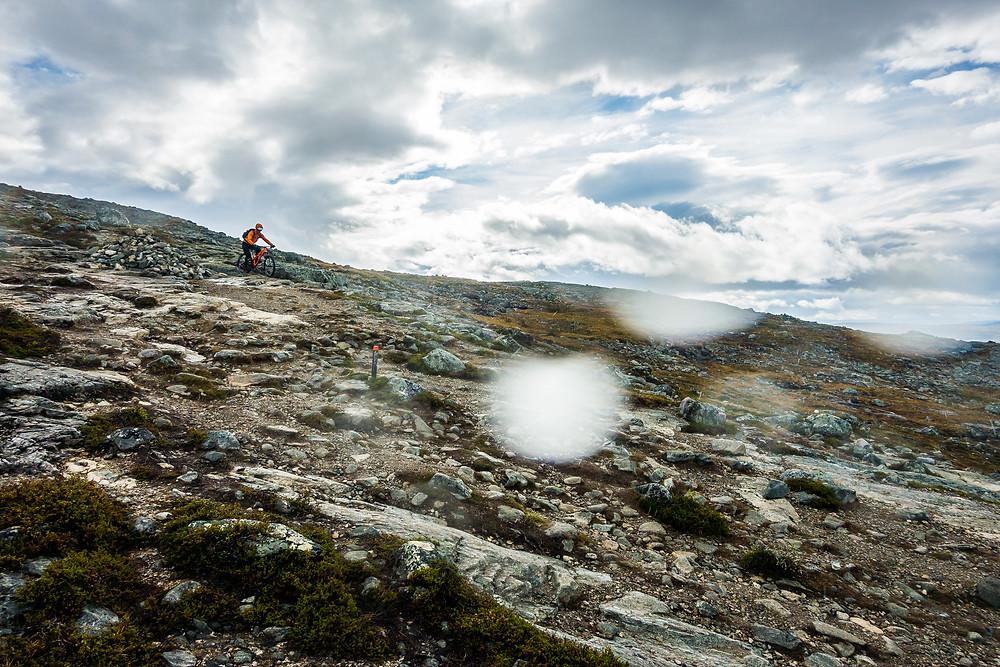 Mountain biking in Lapland