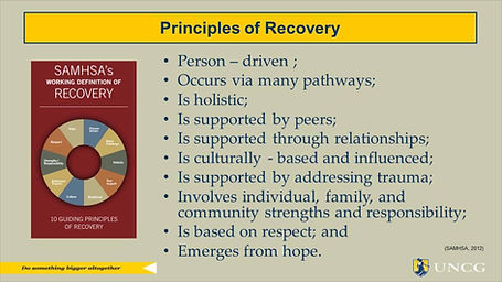 guiding principles of recovery.jpg