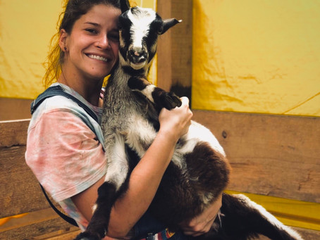 Meet Alana Bayne Hernandez, Meat Science Master's Student