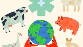 Ciencia animal como un pilar de salud pública
