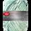 Thumbnail: PRO LANA Fjord Socks - 100g