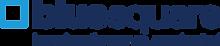 Blue-Square-Logo_Primary_Strapline.png