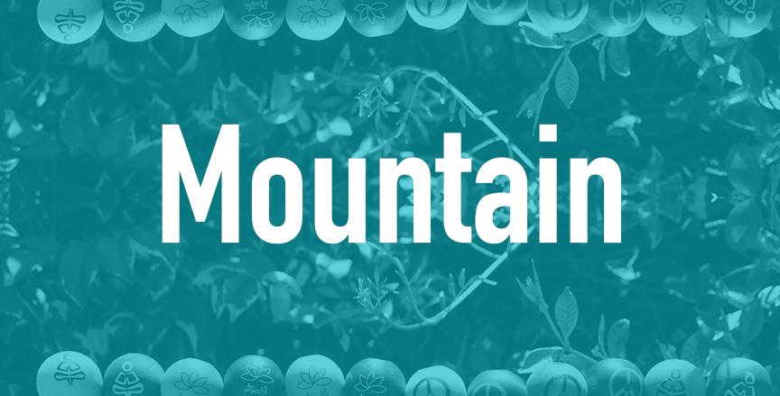 Mountain  QTY=24