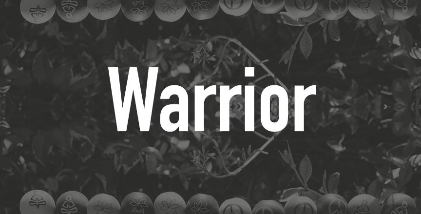 Warrior  QTY=100