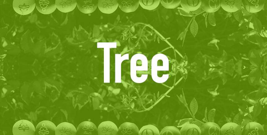Tree  QTY=75