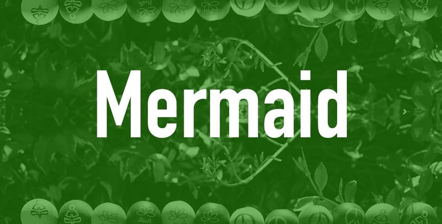 Mermaid  QTY=18