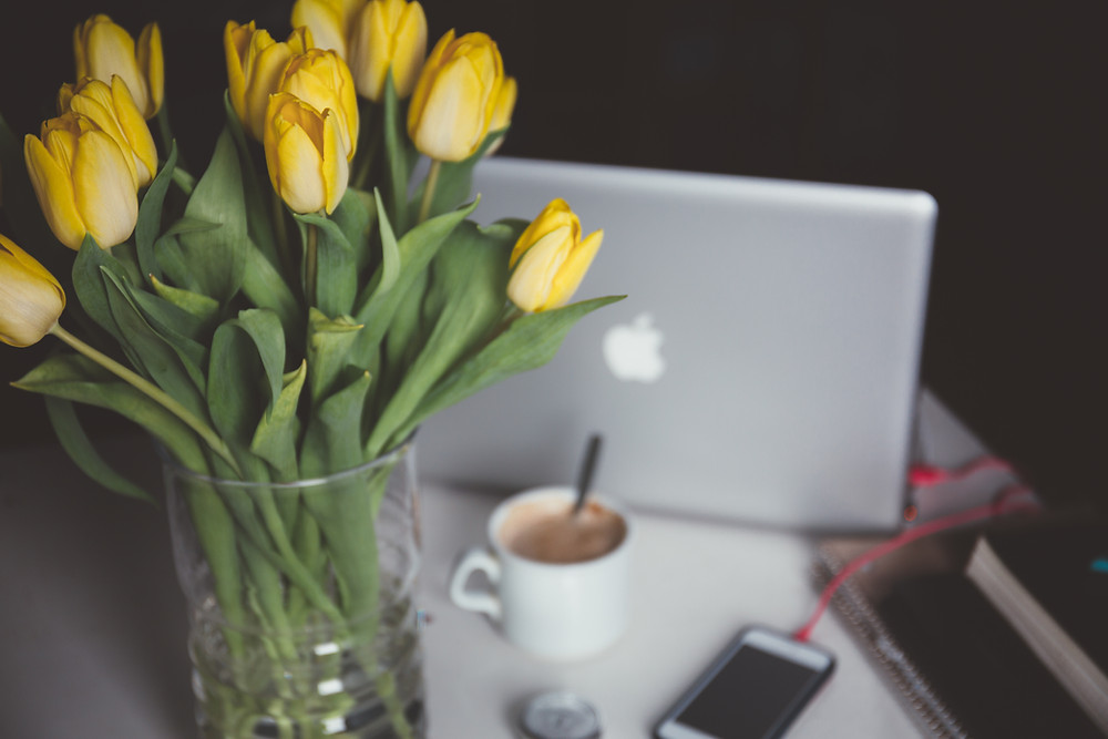working in the morning, table with flowers laptop and coffee, internartional students blog, alien thoughts boston
