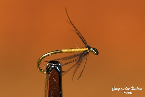 Orange Starling  $7.00 - 27.00