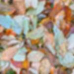 colorfull leaves, closeup of leaf pile, pile of leaves