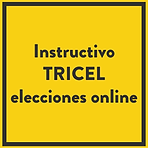 instructico.png