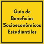 guia_socioeconomica-01.png