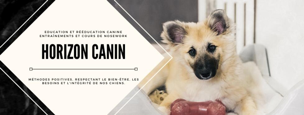 _Horizon canin._ (1).png