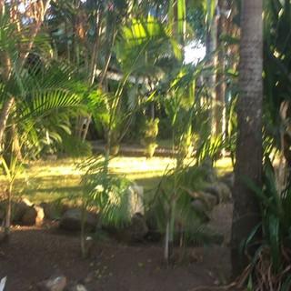 Tamarindo vibes to you all! Pura Vida! 🏖🧘🏻♀️🐒🦎🏄🏻♀️👙🏝☀️ #costarica #beach #playatamarindo #yogawithelda #yogaretreats