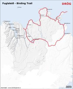 The Birding Trail