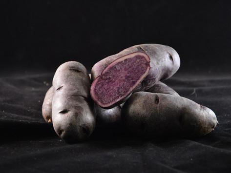 Lokaal verhaal | De bijzondere aardappelen van The Potato Company uit Emmeloord
