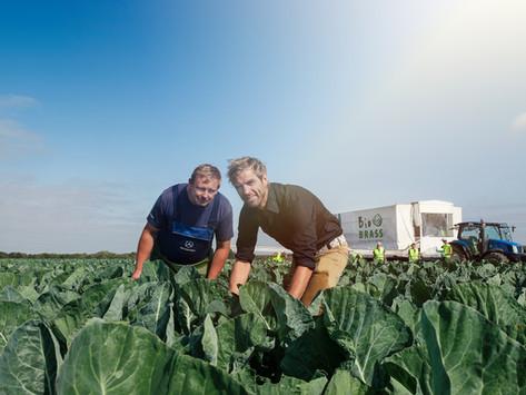 Lokaal verhaal | De biologische groenten van Bio Brass uit Zeewolde.