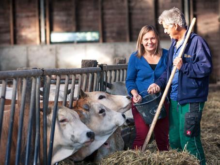 Lokaal verhaal | De Stadsboerderij van Tom en Tineke in Almere