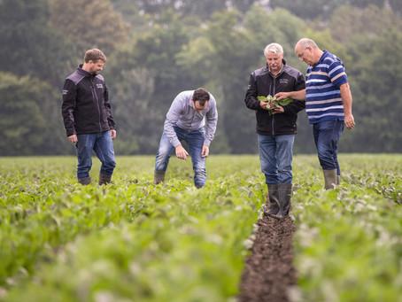 Lokaal verhaal | Flevolandse witlof van Jan en Inge de Vries