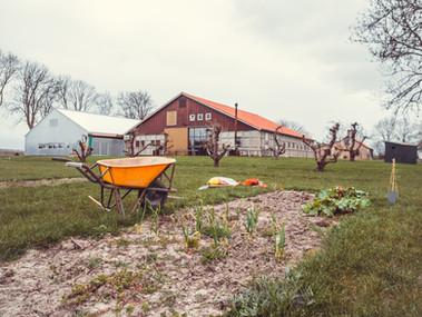 Fotografie: Elske Hazenberg