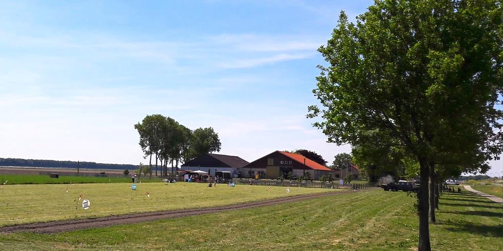 Pinkster  Picknick op het  land van Boerkok