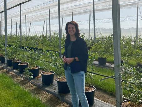 Lokaal verhaal | In gesprek met Manon over de blauwe bessen van Fairplant uit de NOP