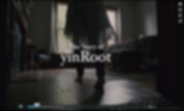 story of yinroot.png
