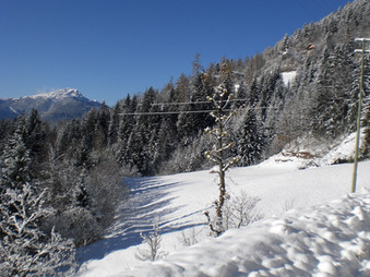 winter wiese.JPG