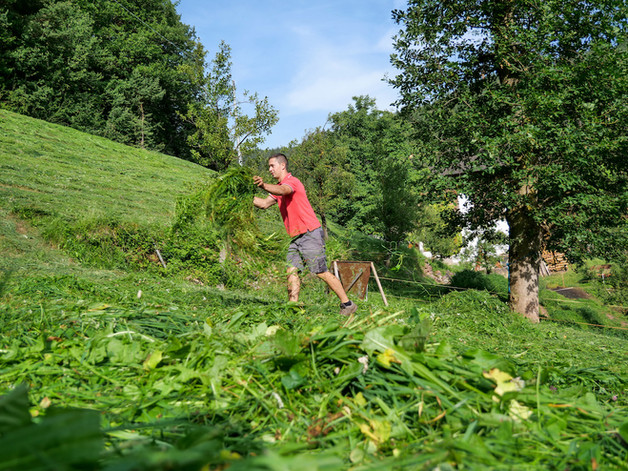michael beim gras.jpg