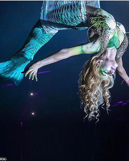 Aerial Net Cirque Corporate Entertainment