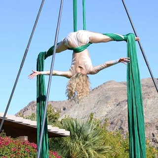 🌴✨Cirque Mirage ✨🌴 performing in palm