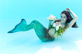 Mermaids Corporate Entertainment