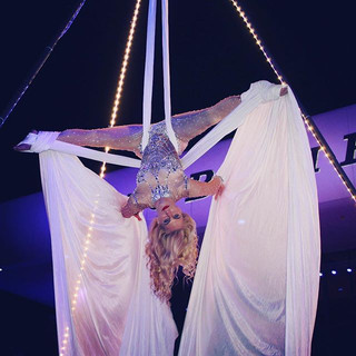 ✨🌴Cirque Mirage🌴✨ Our Beautiful Aerial