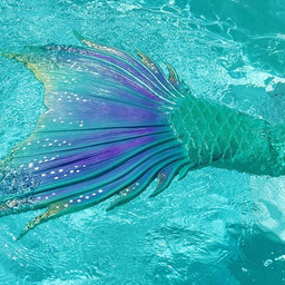 A sneak peek of our new Mermaid! 🧜🏻♀️