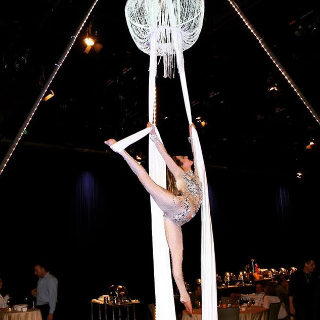 ✨🌴Cirque Mirage🌴✨ Aerialist performanc