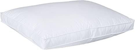 Luxury European White Down Pillow