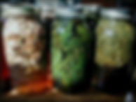 picinfusions.jpg