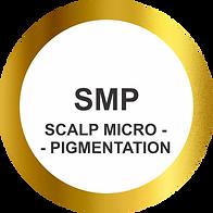 scalp micropigmentation sydney brisbane LR.png