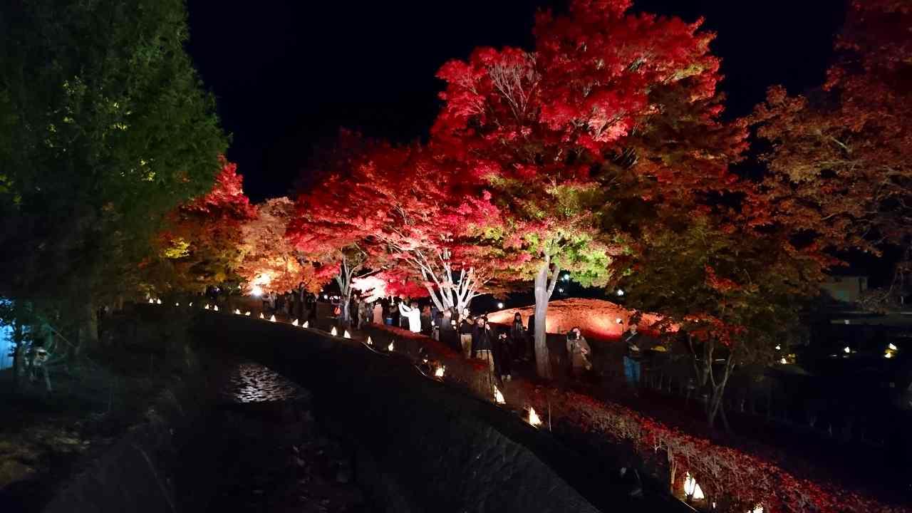 Autumn festival around kawaguchiko