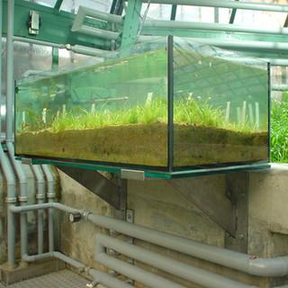 Aquariumstütze