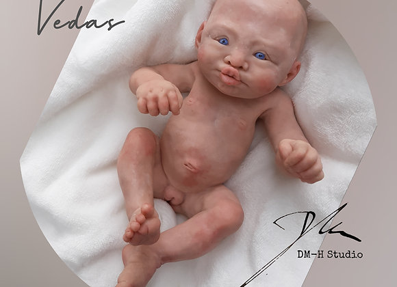 """COMING SOON """"Vedas"""" MINI silicone baby"""
