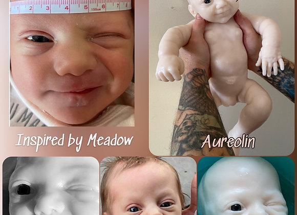 "'Aureolin"" Squinting Newborn Full Body Silicone Kit"