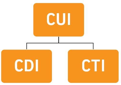 What is CUI/CDI/CTI?