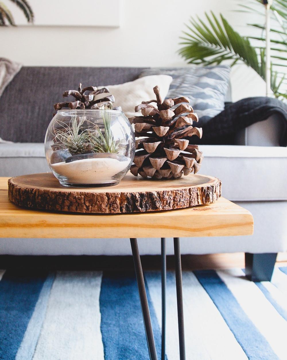 Luxury Apartments For Rent in Winnipeg | Ironclad Properties Inc.