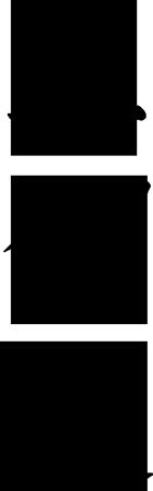 shikendo-pion-czarne.png