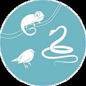 Hauptseite_Zoologie.png