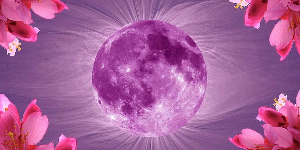 Lunar Ceremony