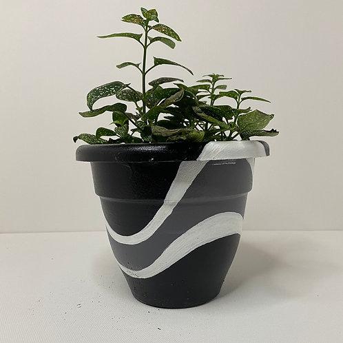 Abstract Black Pot