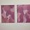 Thumbnail: Pink Quote Set