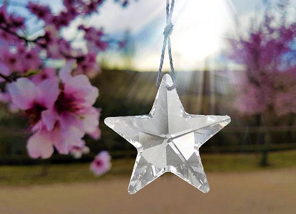 ESTRELLA DE LA LIBERTAD  / STAR OF FREEDOM