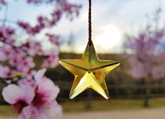 ESTRELLA DEL ALMA / SOUL STAR